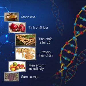 Kẹo sâm tăng cường sinh lý Nam bán tại Đà Nẵng