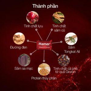 Thành phần kẹo sâm Hamer tăng cường sinh lý Nam